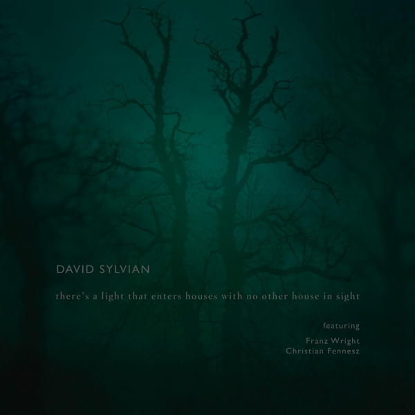 david_sylvian_theres_a_light_that_enters